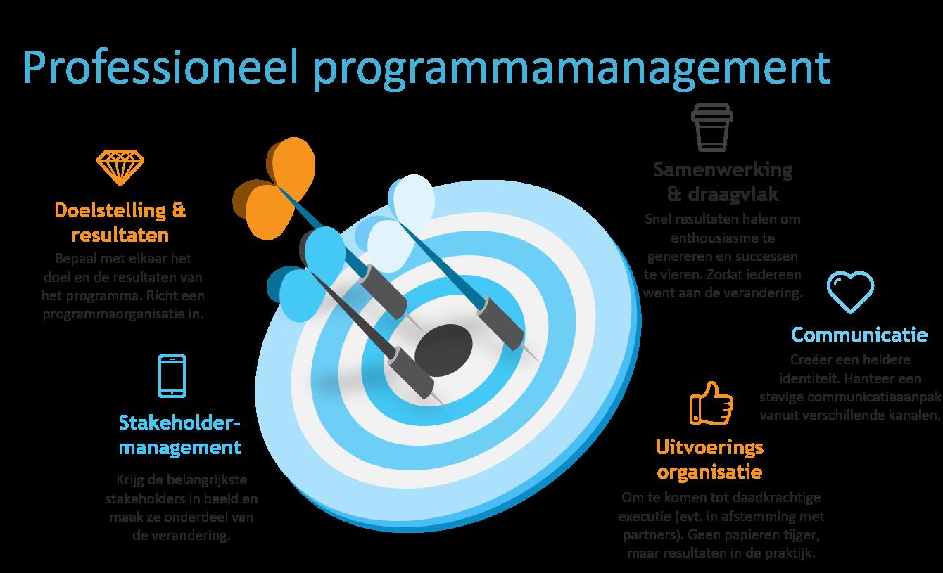 Professioneel programmamanagement